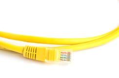 желтый цвет lan крупного плана кабеля предпосылки белый Стоковые Изображения