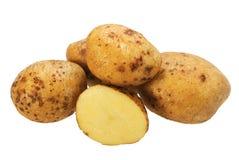желтый цвет potatos группы Стоковое Изображение
