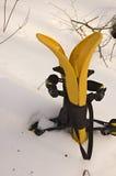 желтый цвет snowshoes стоковая фотография