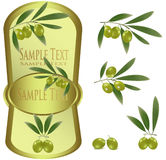 Желтый ярлык с зелеными оливками. Стоковая Фотография RF