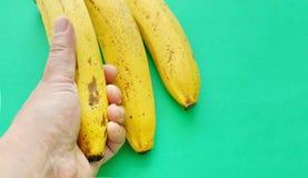 3 желтых банана на зеленой предпосылке рука человека держит a Стоковые Фотографии RF