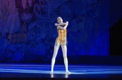 Жемчуга балета Стоковые Фотографии RF