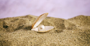 Жемчуг в seashell на пляже Стоковые Изображения RF