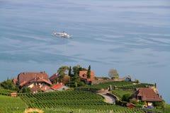 Женевское озеро и Lavaux стоковые изображения