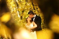 Жених и невеста в лесе Стоковые Фото