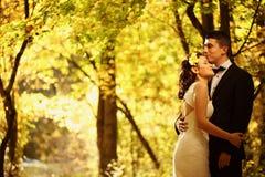 Жених и невеста в лесе Стоковое фото RF