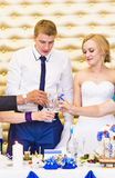 Жених и невеста держа стекла шампанского свадьбы Стоковое Изображение RF