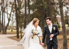 Жених и невеста идя в парк осени или зимы Стоковое Изображение