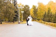 Жених и невеста идя в парк осени Стоковое Изображение