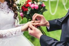 Жених и невеста кладет кольцо Стоковая Фотография