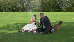Жених и невеста на пикнике видеоматериал