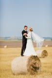 Жених и невеста на предпосылке поля лета Стоковые Фотографии RF