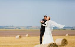 Жених и невеста на предпосылке поля лета Стоковое Изображение