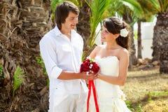 Жених и невеста около пальмы стоковое фото rf