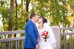 Жених и невеста свадьбы осени Стоковое фото RF