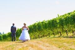 Жених и невеста сперва смотрит Стоковое Фото