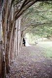 Жених и невеста стоя вдоль строки тройников Стоковое Изображение