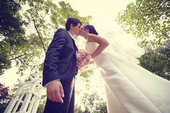 Жених и невеста целуя в парке стоковое изображение