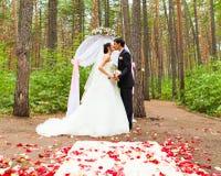 Жених и невеста целуя около свода свадьбы Стоковая Фотография RF