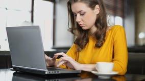 Женская деятельность блоггера на ноутбуке в кафе, вывешивая издание в социальной сети сток-видео