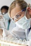 женская пробирка научного работника лаборатории Стоковое Изображение