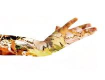 Женская рука двойная экспозиция Стоковое фото RF