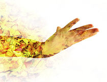Женская рука двойная экспозиция Стоковое Изображение
