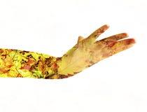 Женская рука двойная экспозиция Стоковое Фото