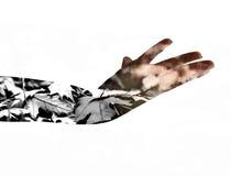 Женская рука двойная экспозиция Стоковое Изображение RF