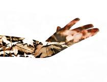 Женская рука двойная экспозиция Стоковые Изображения