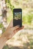 Женская рука держа телефон Стоковые Фотографии RF