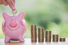 Женская рука кладя монетку в копилку, для для того чтобы проинвестировать деньги, идеи для сохранять деньги для использования в б стоковое изображение rf