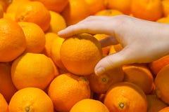 Женская рука принимает оранжевые Клементины плодоовощи стоковые фотографии rf