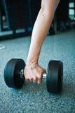 Женская рука принимая dumbells от строки штанг в спортзале Стоковые Фотографии RF