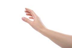 Женская рука Стоковое Фото