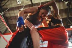 Женские боксеры воюя в боксерском ринге Стоковые Фотографии RF