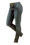 Женские брюки джинсов стоковое фото