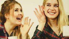 Женские друзья злословя совместно Стоковое фото RF