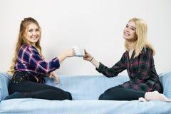 Женские друзья сидя на говорить софы Стоковое фото RF