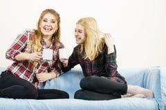 Женские друзья сидя на софе имея потеху Стоковые Изображения RF
