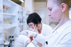 Женские исследователя в лаборатории химии Стоковые Фото