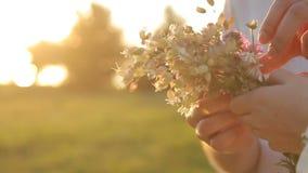 Женские и мужские руки держа букет полевых цветков сток-видео