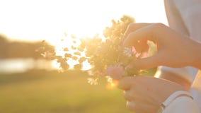 Женские и мужские руки держа букет полевых цветков акции видеоматериалы
