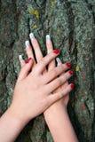 Женские ладони на предпосылке расшивы дерева Стоковая Фотография