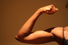 женские мышцы Стоковые Фото