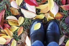 Женские ноги в ботинках на взгляде листвы осени сверху, концепция осени стоковая фотография rf