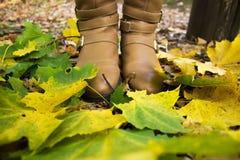Женские ноги в конце-вверх ботинок среди упаденных листьев Стоковое Изображение RF