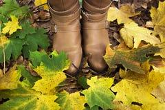 Женские ноги в конце-вверх ботинок среди упаденных листьев Стоковые Фото