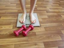 Женские ноги стоят на масштабах и лож 2 красной гантелей близко на поле Стоковая Фотография