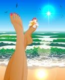 Женские ноги бесплатная иллюстрация
